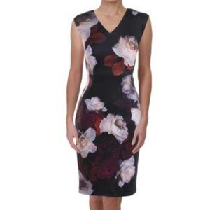 Sleeveless Floral Print V neck Scuba Dress, Sz4